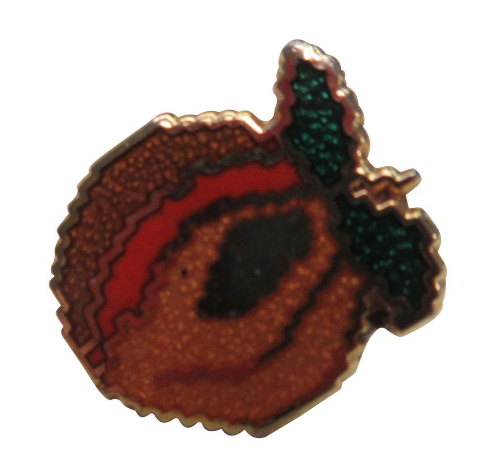 Scan of Document: Apricot Pin Lapel Button