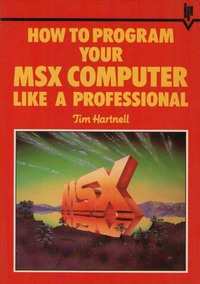 How to program your MSX computer like a professional