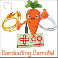 Conducting Carrots! - 30 August 2018