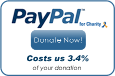 PayPal - Donate Now!